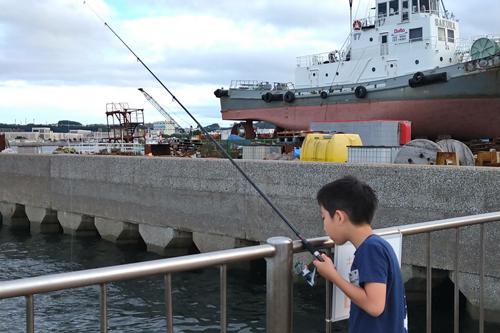 釣り始めました。
