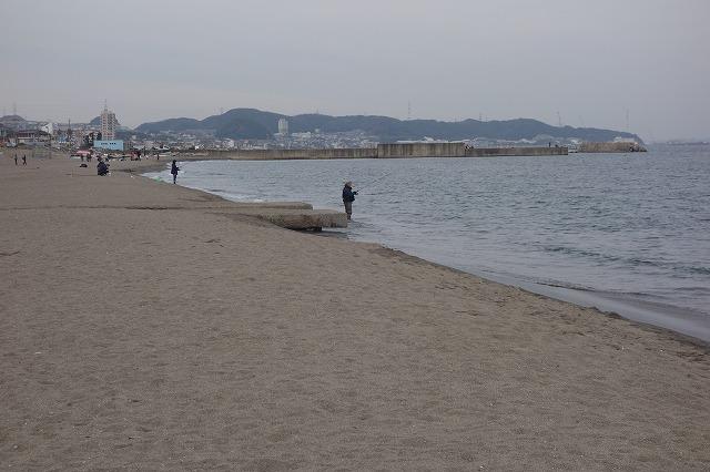 三浦海岸の混雑状況