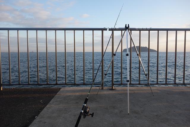 横須賀市のうみかぜ公園での釣果