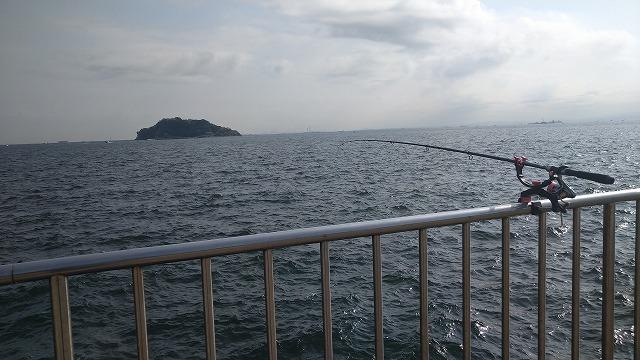 HOLIDAY PACK 10 210Tと受太郎でのサビキ風景写真