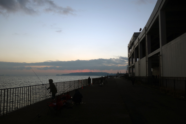 横須賀市のうみかぜ公園の朝7時