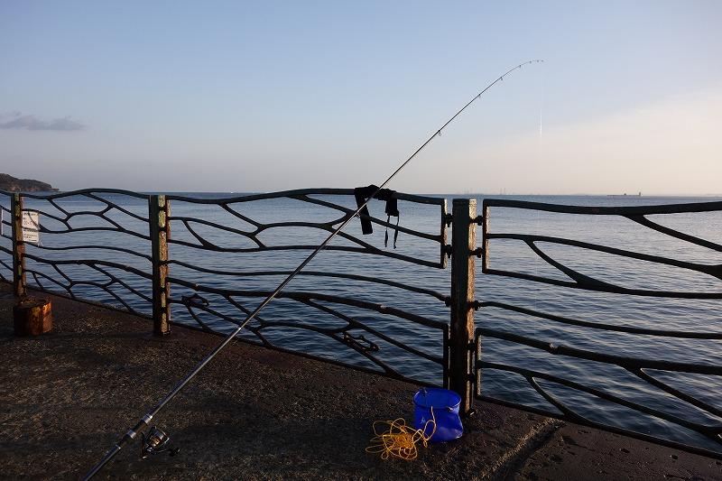 横須賀海辺釣り公園での釣り風景