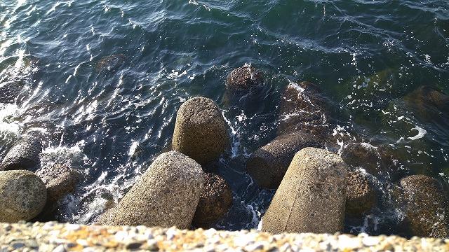 福浦岸壁の堤防真下のテトラ