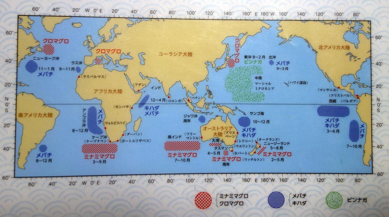マグロの漁場図