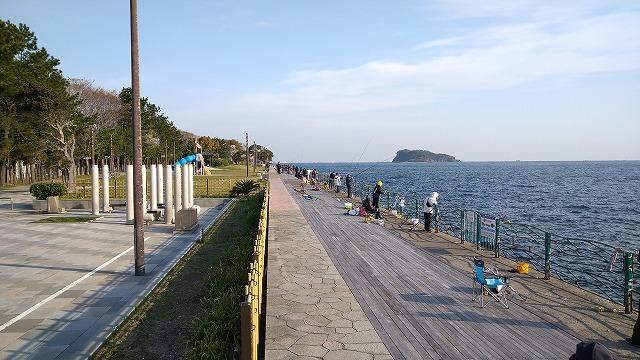 横須賀海辺釣り公園の混雑状況(釣り場)