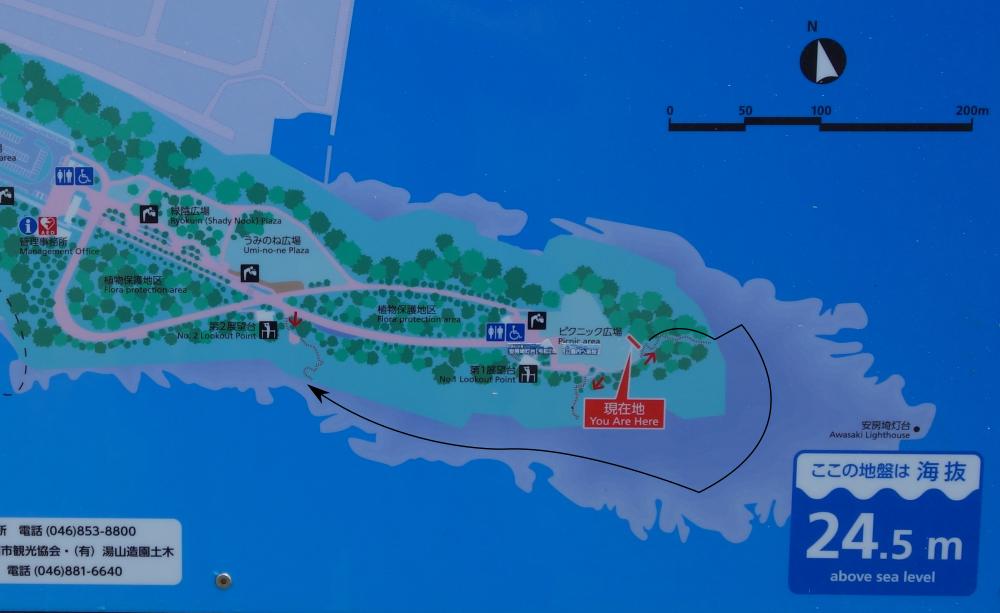 城ヶ島公園の磯確認順序