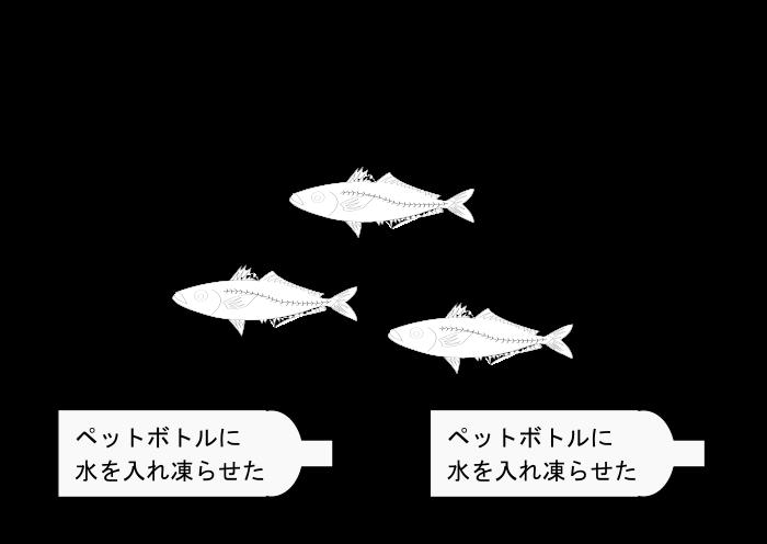 クーラーボックスに氷だけを入れ小魚の締める方法のイラスト