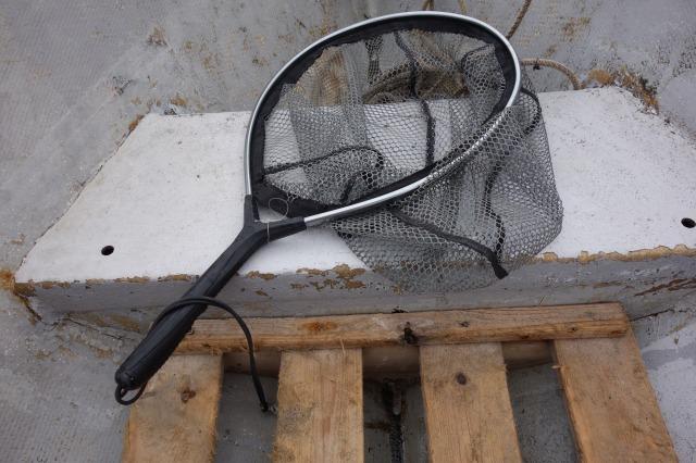 無料で借りれるタモ網の写真