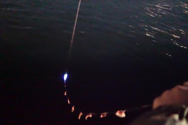 夜釣りの風景写真