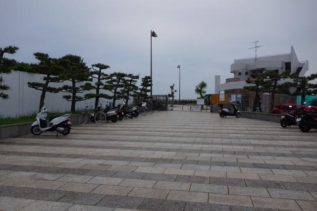 横須賀海辺釣り公園の混雑状況