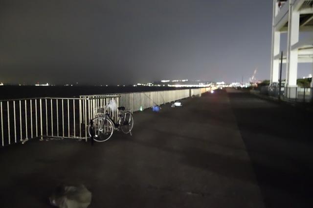 うみかぜ公園の混雑状況、22時ころの写真です。