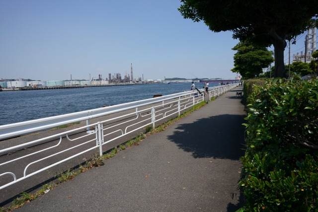 根岸港釣り場の写真