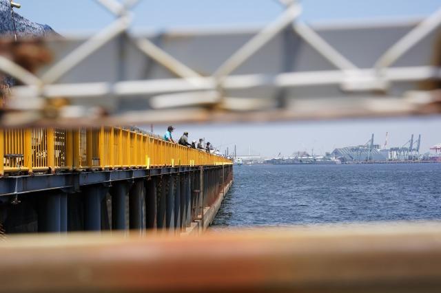 磯子海づり施設の写真