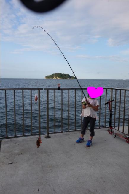 チビカサゴを釣る娘の写真