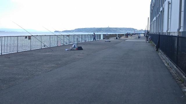 10月11日のうみかぜ公園の釣り人さん状況の写真