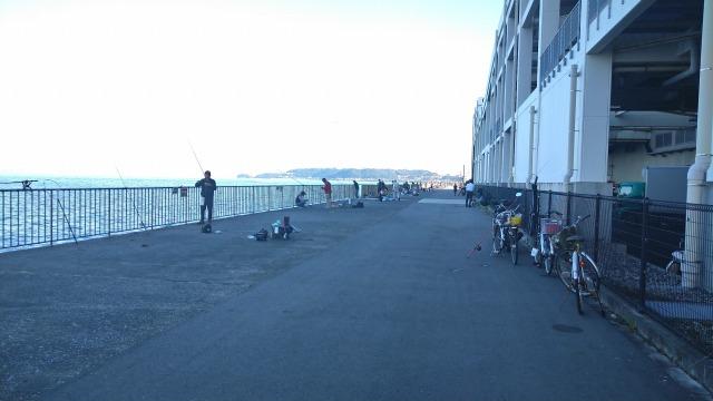10月14日のうみかぜ公園の釣り人さん状況の写真